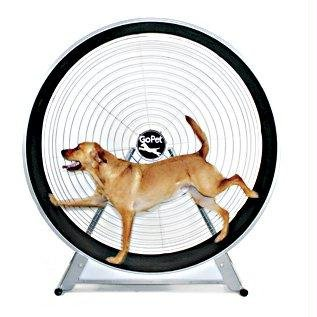 GoPet Treadwheel for Dogs