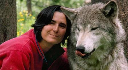 Wolf: Source: news.softpedia.com