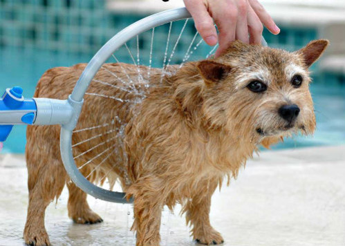 New Woof Washer Dog Bath Provides 360 Degree Wash & Rinse for Your Pet: Dog bath image via Woof Washer 360 Facebook
