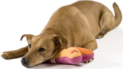 PetStages Heartbeat Pillow