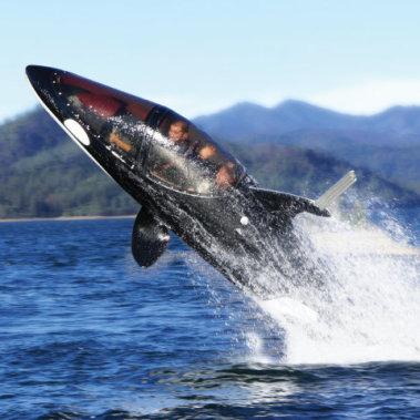 The Killer Whale Submarine cabin: by Hammacher Schlemmer