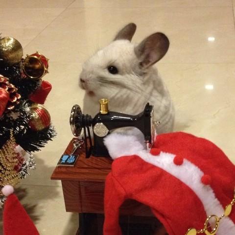 BuBu Sews Santa Suit