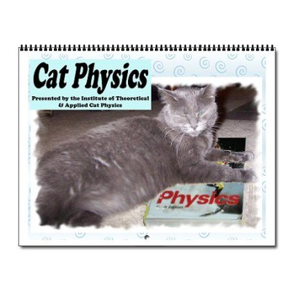 Cat Physics 2011 Wall Calendar