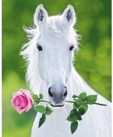 Romantic Horse (Image via Pinterest)