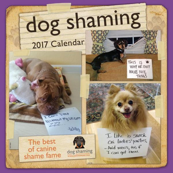 The Top Ten Offbeat Pet & Animal Calendars For 2017