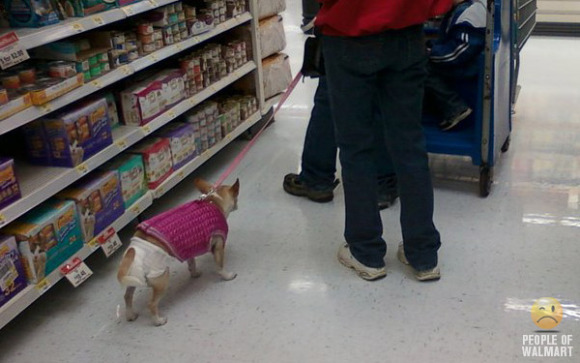 The Top Ten Dogs of Walmart: Uncaged, Unleashed & Unbelievable