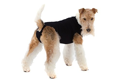 Suitical Recovery Suit for Dogs - Black