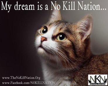 No Kill Nation: NoKillNation.org