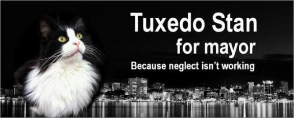 Tuxedo Stan running for mayor of Halifax, Nova Scotia