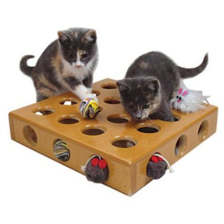 Smart Cat Peek-A-Prize Cat Toy Box