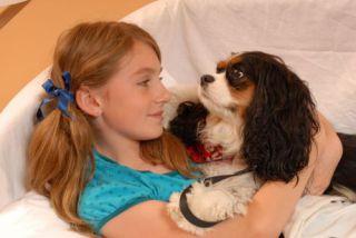 Visiting dog: image via triblocal.com