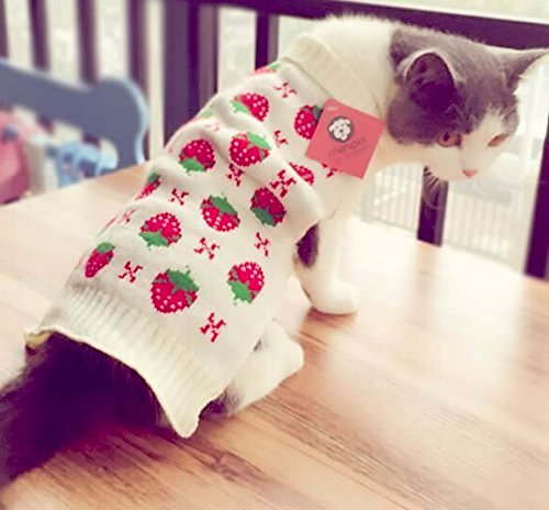 Classic Strawberry Cat Sweater