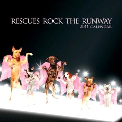 Rescues Rock The Runway 2011 Wall Calendar