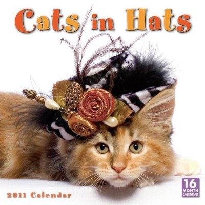 Cats In Hats 2011 Wall Calendar