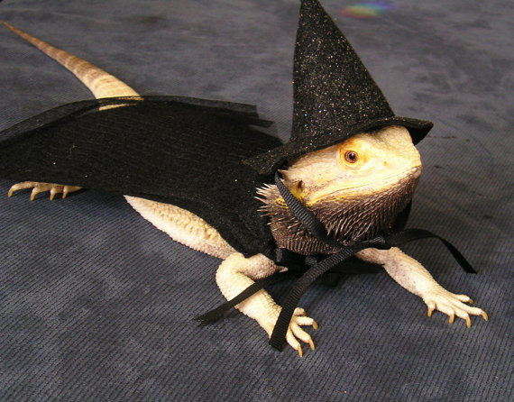 Witchy Lizard (Image via Etsy)