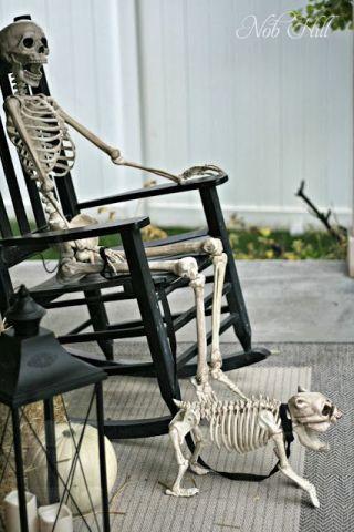 Skeleton Dog (Image via Nob Hill)