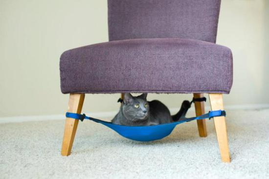 Kitty Cradle attaches to any chair with four legs: © Mark Martinez Photography