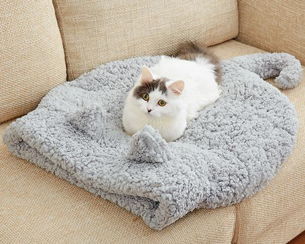 Cat-Shaped Cat Bed Channels Your Pet's Inner Xzibit