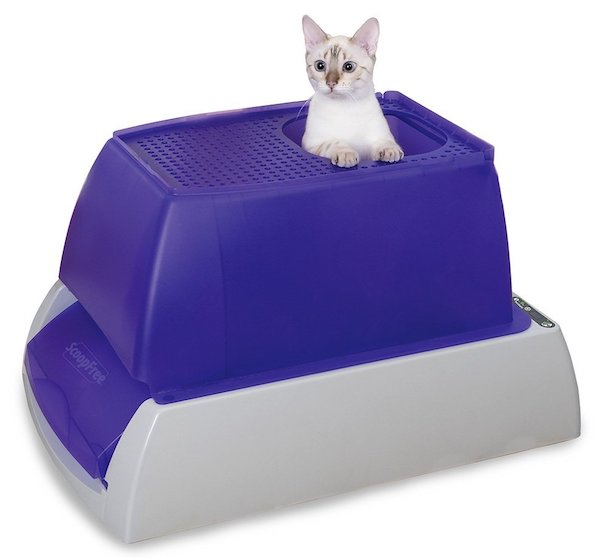 PetSafe ScoopFree Top Entry Ultra Self Cleaning Litter Box
