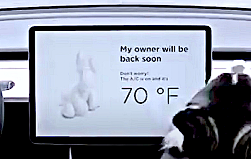 Tesla's New 'Dog Mode' Keeps Pets Safe And Comfy While You ...