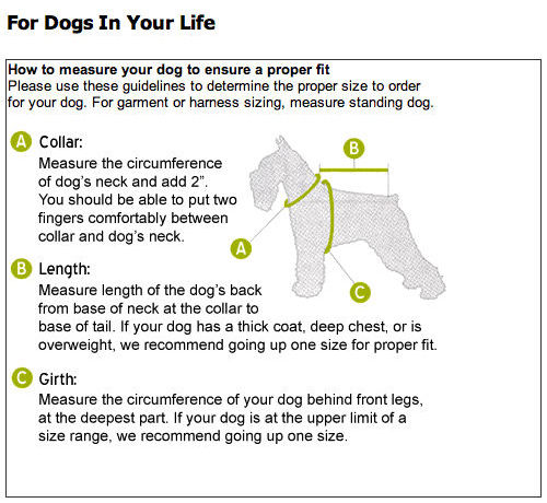 dog measuring chart