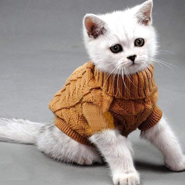 Cable Knit Turtleneck Sweater for Cats