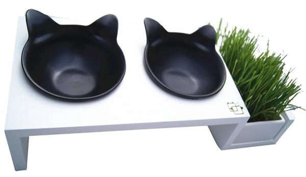 ViviPet Dining Tables For Cats Ergonomic Classy Modern  : x710bZr39NgLSL15000jpgpagespeedicfmtzAOAu0p from petslady.com size 600 x 347 jpeg 17kB