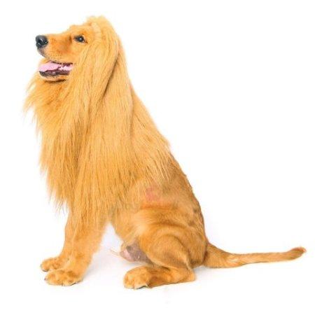 Dogloveit Lion Wig Pet Costume