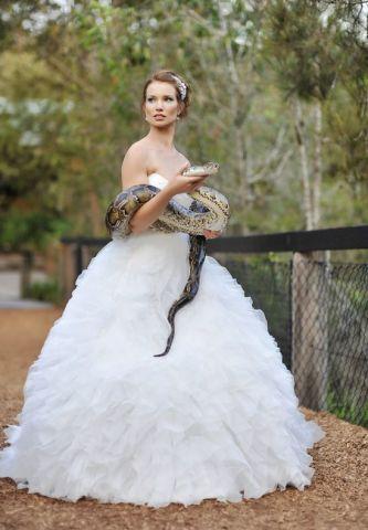 Wedding Snake