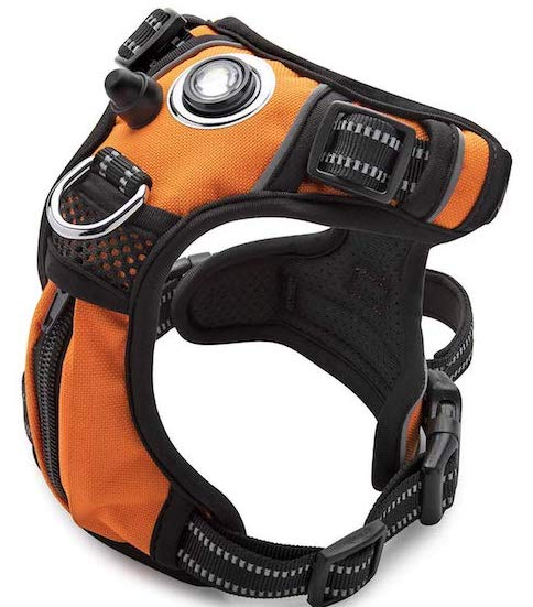 The Headlight Harness