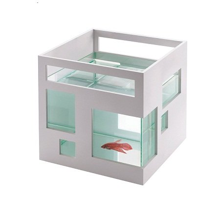 Umbra Fish Hotel