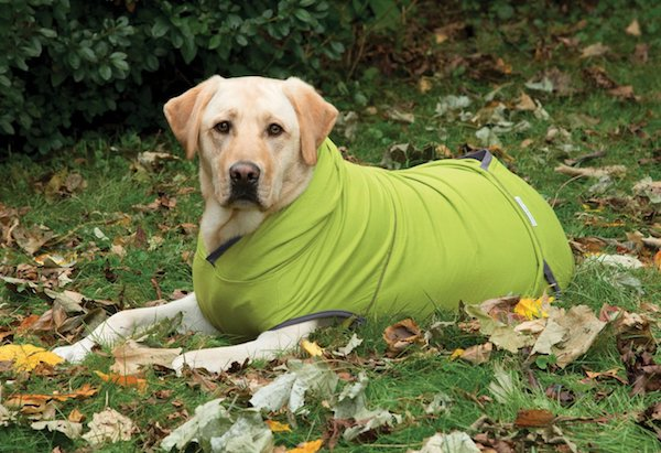 Insect Shield Mesh Tank Top For Dogs (hoodie)