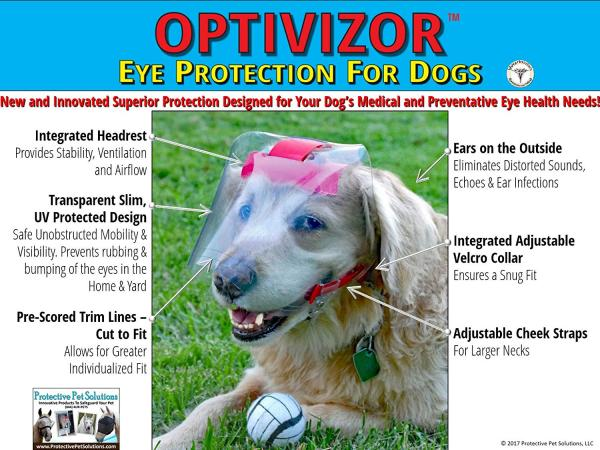 OptiVisor Medical/Preventive Eye/Face Protection