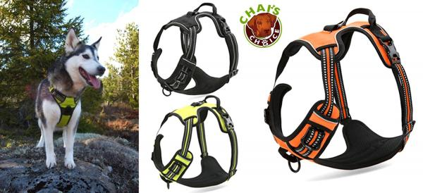 Chai's Choice Best Front Range Dog Harness