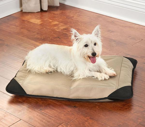 Caldera's Pet Pain Relieving Pet Bed