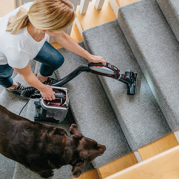 Motorized pet hair power brush on Tru-Pet Shark vacuum