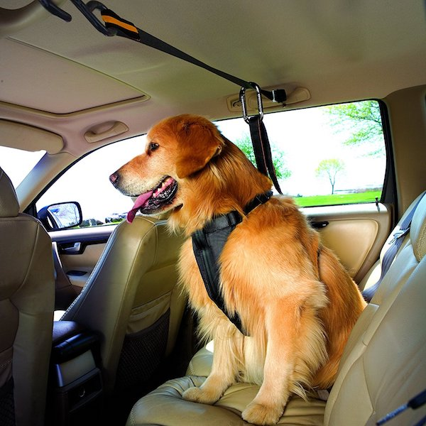 Kurgo Dog Seat Belt With Carabiner