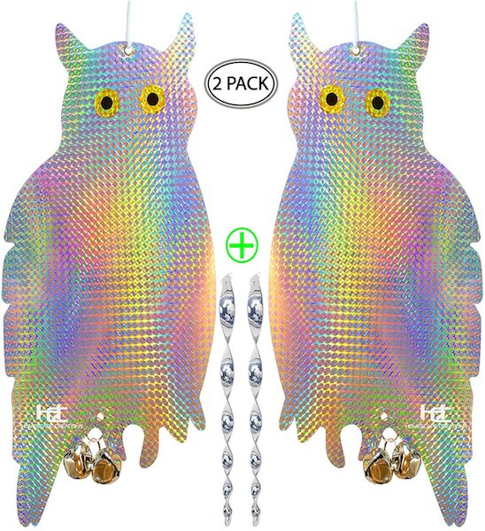 Homescape Creations Holographic Owls