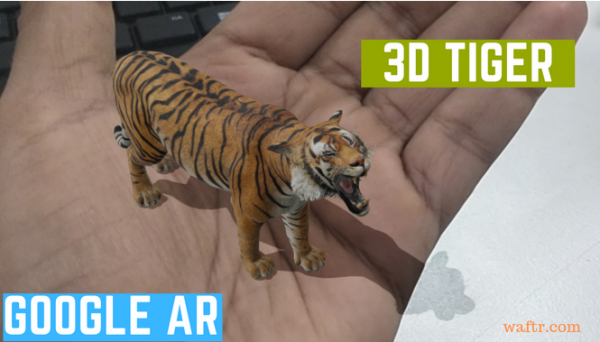 COVID-19 Activity: Create Google Augmented Reality Wildlife