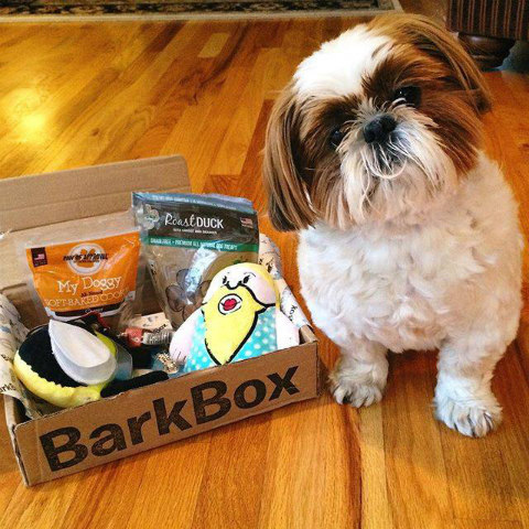 BarkBox Goody Packages: BarkBox Image via BarkBox Facebook