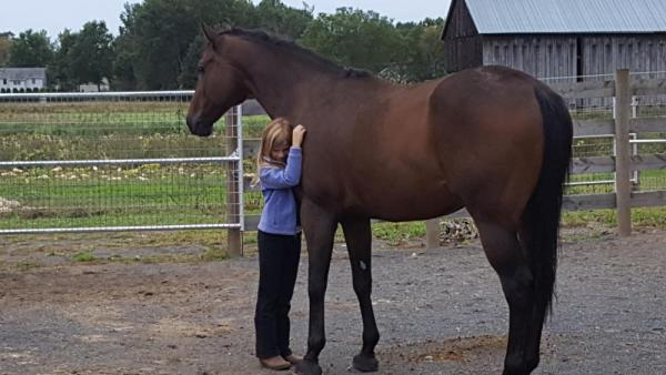 Teenage Girl hugs Big Bay Horse