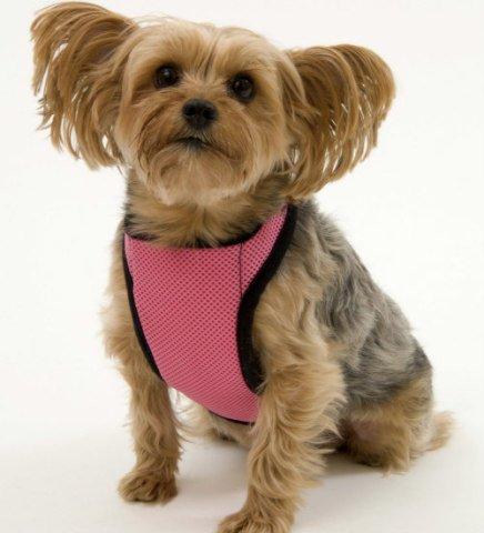 Kumfy Tailz Warming & Cooling Harnesses: Cool gel harnesses help prevent heatstroke in pets