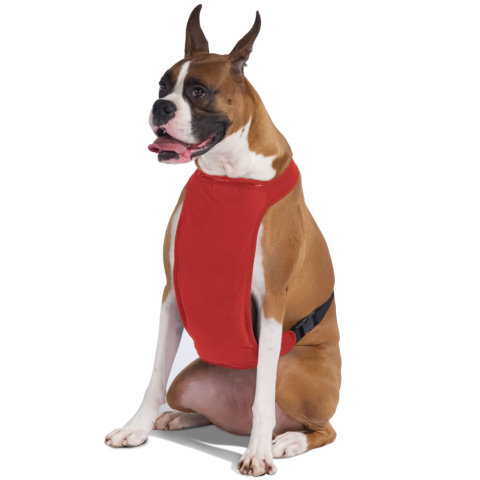 The Temperature Moderating Pet Harness