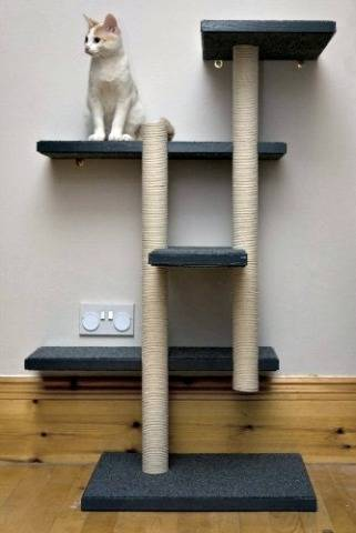15 Best Cat Scratching Posts From Fun To Fabulous