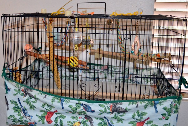 You & Me Small Bird Cage