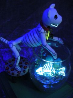 Day of the Dead Halloween Fish Bowl: Image by Claylindo, Flickr