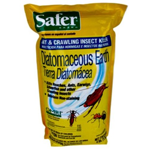 Diatomaceous Earth is great for non-toxic pest control: Get rid of fleas without all the chemicals