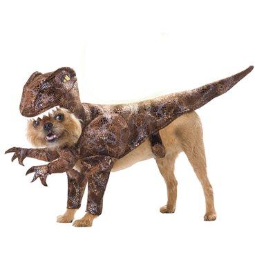 Raptor Dog