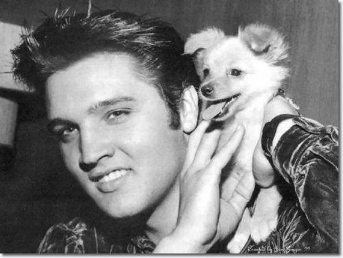 Elvis Presley and Sweet Pea: Source: Elvispresleymusic.com