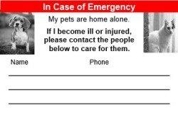 Emergency Pets: image via truthaboutpetfood.com